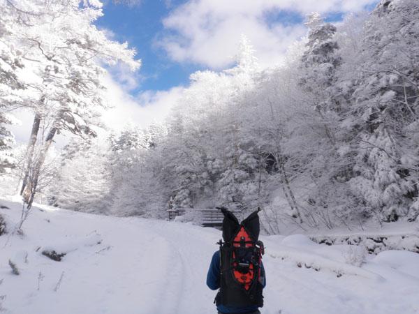 八ヶ岳6.jpg