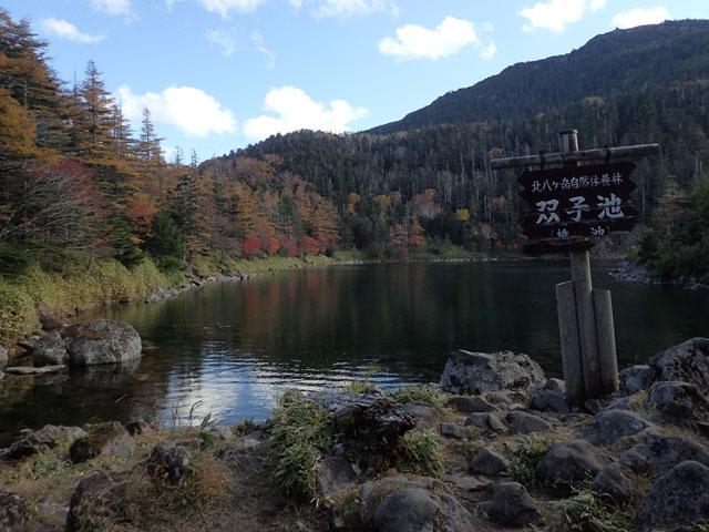 北八ヶ岳27.JPG