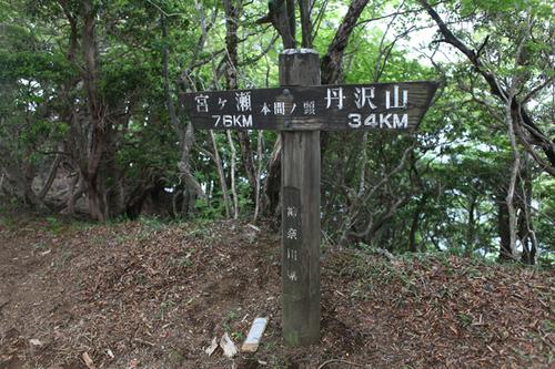 tanzawa13.jpg