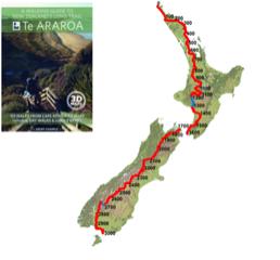 NZ1-1.png