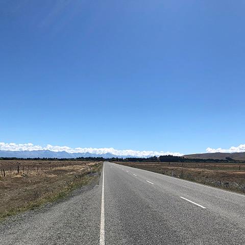 NZ2-2.jpeg
