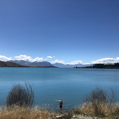 NZ2-3.jpeg