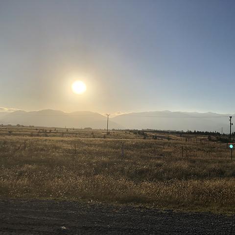NZ2-5.jpeg