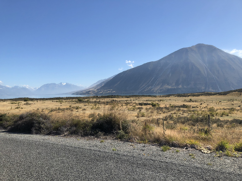 NZ3-2.jpg