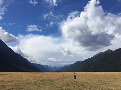 NZ5-3.jpg