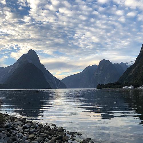 NZ5-6.jpg