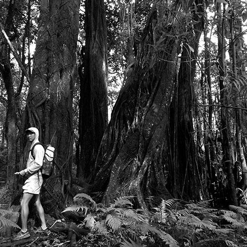hike shorts 000.jpg