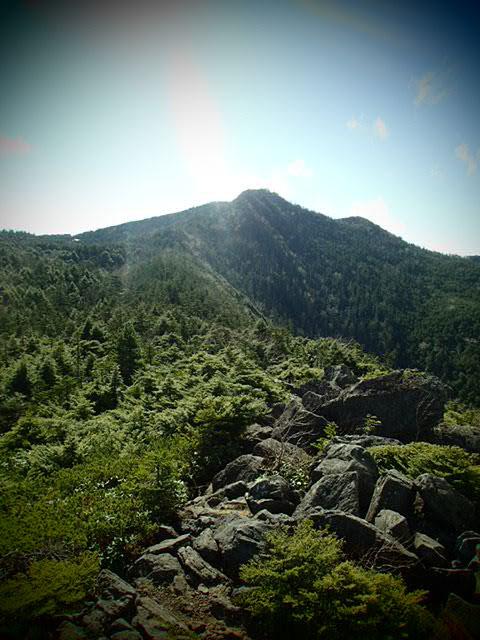 北八ヶ岳24.JPG